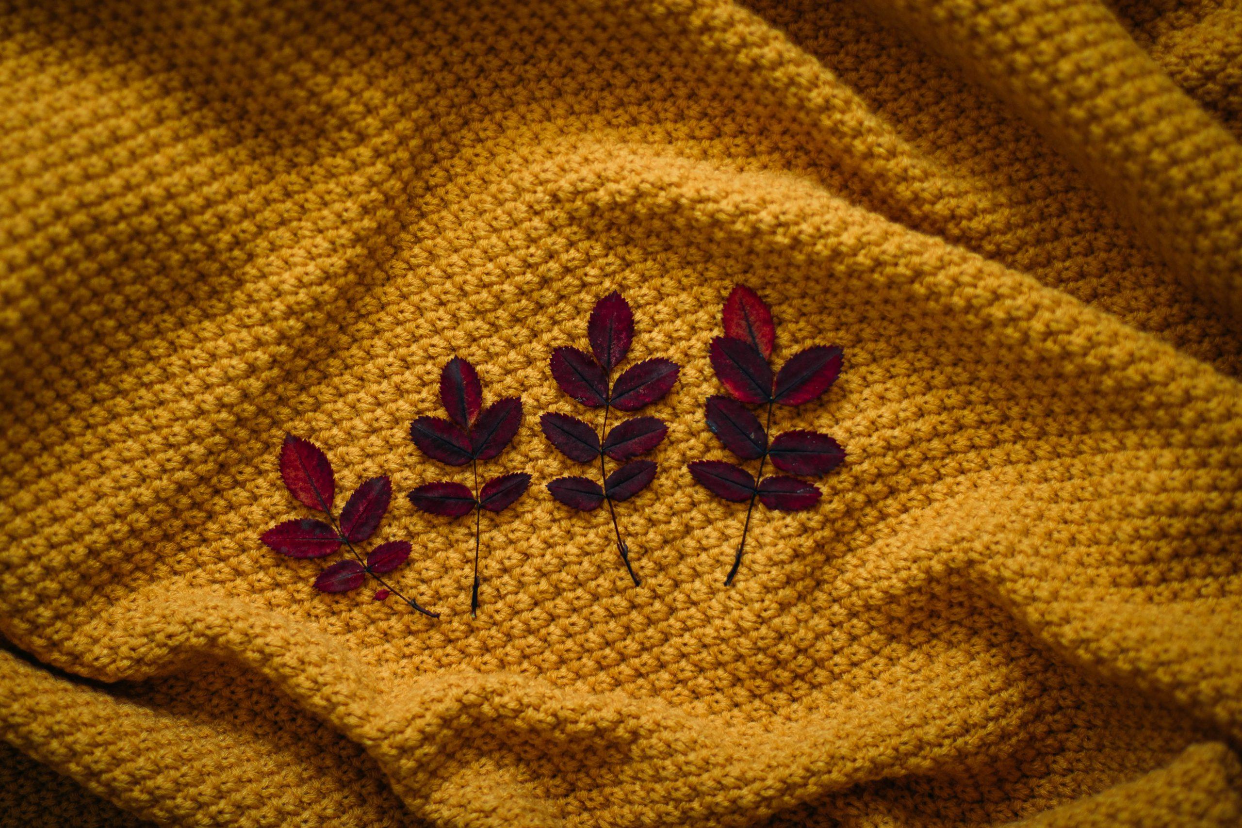 Jaki sweter będzie najlepszy dla Ciebie
